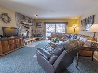 Base Camp #45 remodeled corner condo - Kirkwood vacation rentals