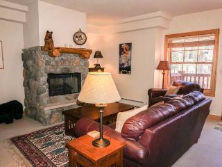 Meadow Stone Lodge Luxury Two Bedroom - Kirkwood vacation rentals