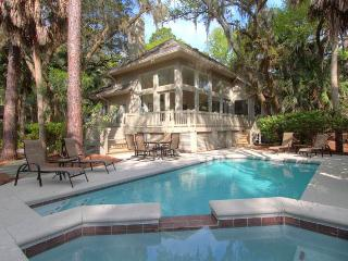 Sandhill Crane 11 - Hilton Head vacation rentals