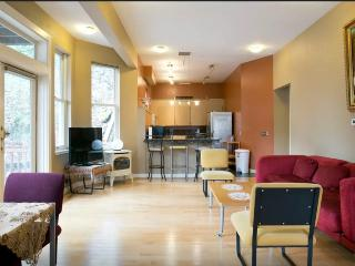 Beautiful place in downtown Portland - Portland vacation rentals