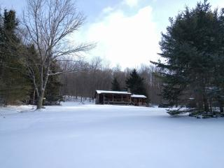 Cozy Cabin in the Catskills for Winter - Andes vacation rentals