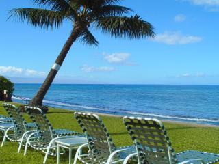 414-Paki Maui - Garden View! OceanFront Resort! - Napili-Honokowai vacation rentals