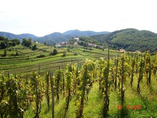 Countryside vacation apartment - Samobor vacation rentals