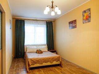 Romantic 1 bedroom Irkutsk Apartment with Internet Access - Irkutsk vacation rentals