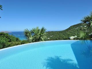 Villa Les Lataniers - STB - Saint Jean vacation rentals