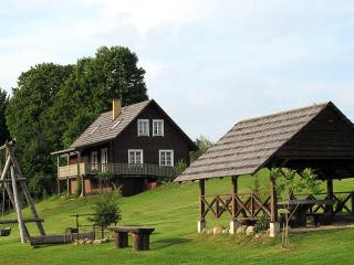 6 bedroom Cottage with Microwave in Ignalina - Ignalina vacation rentals