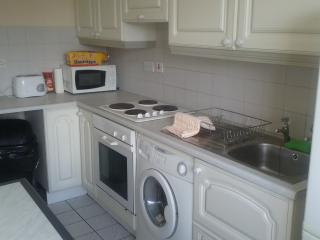 Nice 3 bedroom Apartment in Galway - Galway vacation rentals