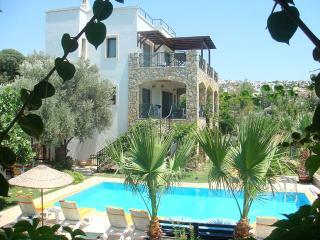 Perfect 4 bedroom Villa in Bitez - Bitez vacation rentals