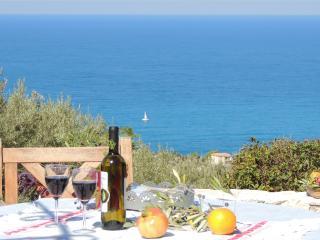 Villa Olea - Agios Nikitas vacation rentals