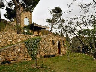 La Torre di Carlo - Monticchiello vacation rentals