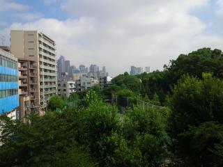 Amazing View !! Yoyogi Park Apartment - Shibuya vacation rentals