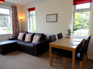 Torquay Apartment - walk to beaches and harbour! - Torquay vacation rentals