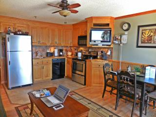 Stunning 1BR/1BA w/ AC & Dedicated Internet - Next to Slopes & Village - Snowshoe vacation rentals