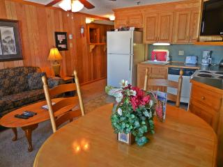 1BR/1BA Faces Slopes & Ballhooter Chair-Lift - Wi-Fi - Walk to Village! - Snowshoe vacation rentals