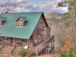 Wonderful Helen Cabin rental with Fireplace - Helen vacation rentals