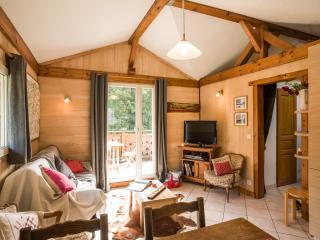 Wonderful 2 bedroom Chamonix House with Internet Access - Chamonix vacation rentals