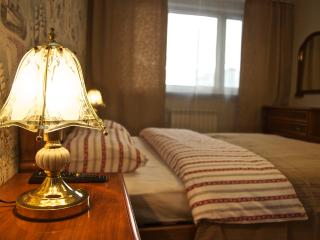 Anchor: 4BR/3BA Best Apartment for Group - Moscow vacation rentals