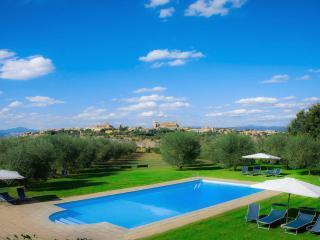 ANTICA VILLA DI CAMPAGNA E APPARTAMENTI PANORAMICI - Orvieto vacation rentals