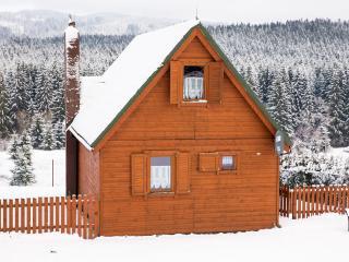 Cottages in Istebna - Krotki Szpic - Istebna vacation rentals