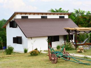 Beautiful 3 bedroom Tulcea House with Internet Access - Tulcea vacation rentals