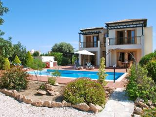 Perfect Villa with Internet Access and DVD Player - Kouklia vacation rentals