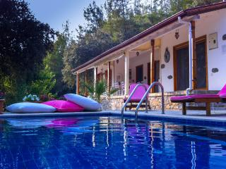 Charming 3 bedroom Akyaka Villa with A/C - Akyaka vacation rentals