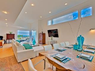 JULY AUG  Specials Ultra Modern Hill Top 31 days - Laguna Beach vacation rentals