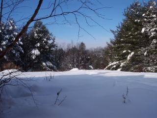 Lovely Apt for skiing at Sugarbush - Waitsfield vacation rentals