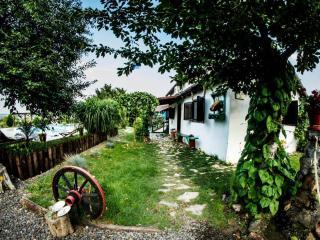 Summer House - Tulcea vacation rentals