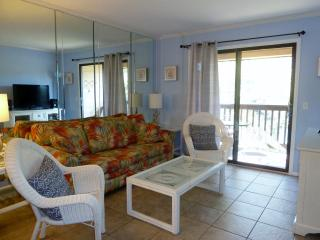 NO STORM DAMAGE/OCEANFRONT Resort, Lagoon View! - Hilton Head vacation rentals