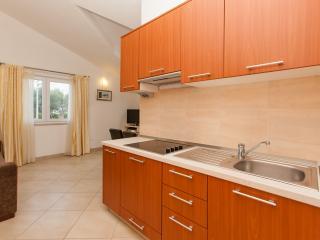 Villa Luna Apt-Ines - Okrug Gornji vacation rentals