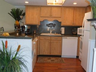 WATERPOINT 1 - OCEAN FRONT-FLAT RATE-3BR/2BA - North Myrtle Beach vacation rentals