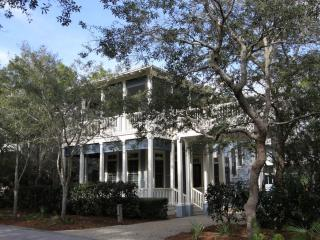 Lovely 5 bedroom House in Watercolor with Deck - Watercolor vacation rentals