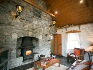 thatched cottage - Doolin vacation rentals