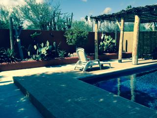 Great for Solo Travellers! - La Paz vacation rentals