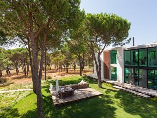 Luxury Villa in Comporta - Comporta vacation rentals