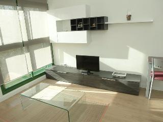 Apartamento Parque de El Retiro 2ºA - Madrid vacation rentals