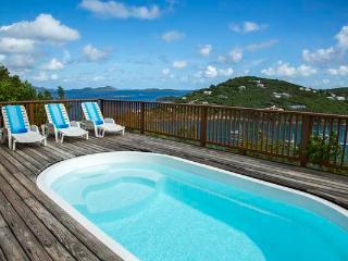 Blue Tang - Saint John vacation rentals