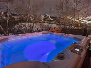 Bavarian Style Chalet with Amazing Ski Area Views - Short Shuttle from the Ski Slopes (11912) - Steamboat Springs vacation rentals