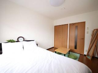 Dotonbori, Nihonbashi Convenient O - Osaka vacation rentals