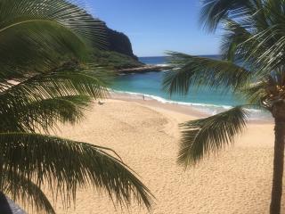 Fully Loaded Executive Beachfront Condo in Hawaii - Makaha vacation rentals