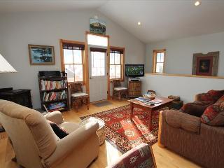 816 Elk Ave - Crested Butte vacation rentals