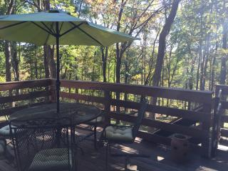 1 Bedroom, kitchen,living room and dining room - Hendersonville vacation rentals