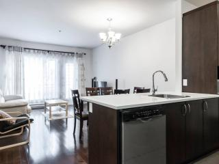 GREAT Location: Downtown Montreal  (Wi-Fi, Metro) - Montreal vacation rentals