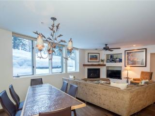 Cozy Condo with Internet Access and Television - Telluride vacation rentals