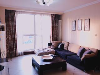 3BD 2BTH (3Beds) Eastapt-Fully Serviced Apartment-Beijing (CBD) #6 - Beijing vacation rentals