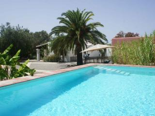 Privat Villa with pool near Santa Gertrudis - San Lorenzo vacation rentals