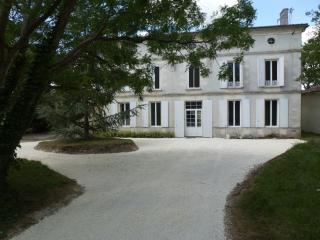 The Chateau at Petit Champagne - Saint Jean d'Angely vacation rentals