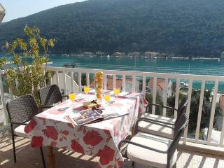 Apartment GALEB - Mokosica vacation rentals