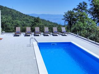 Villa Bianca - A Luxury Property close to Opatija - Opatija vacation rentals